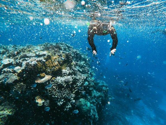 Dive community, diving insurance