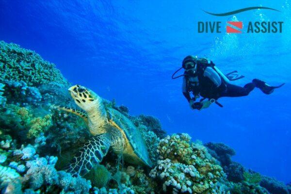 Pro-Diver Annual Liability €3,750,000 Limit